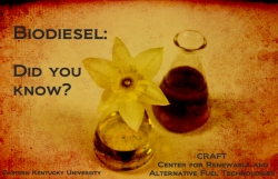 Biodiesel: Who Uses It?